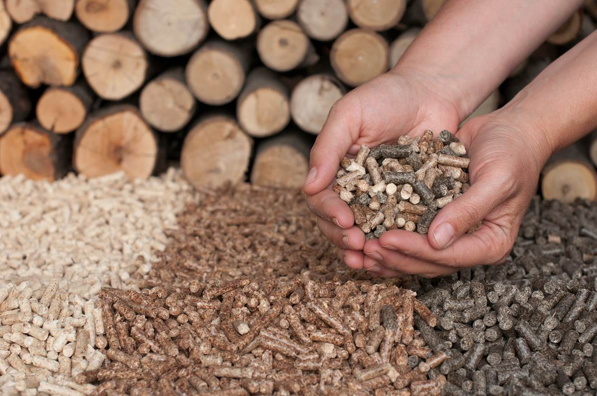 A photo of wood pellets and cord wood